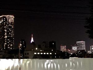 新宿ビル群の夜景