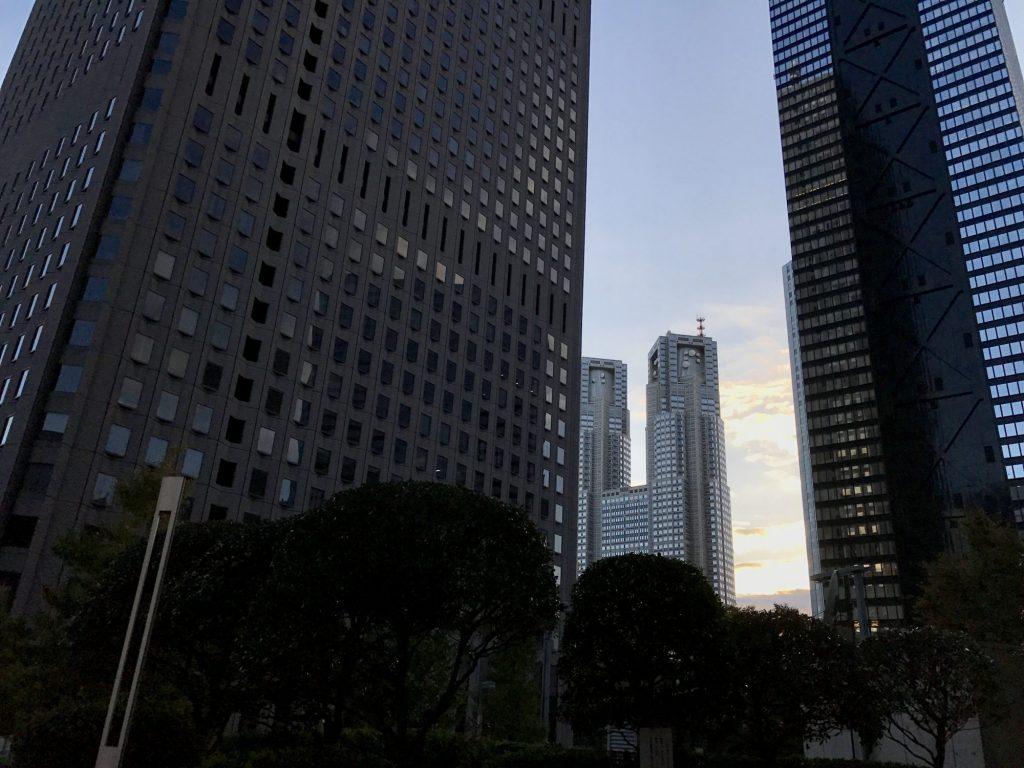 西新宿高層ビル群から見た都庁