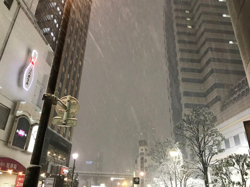 雪の降りしきる歌舞伎町