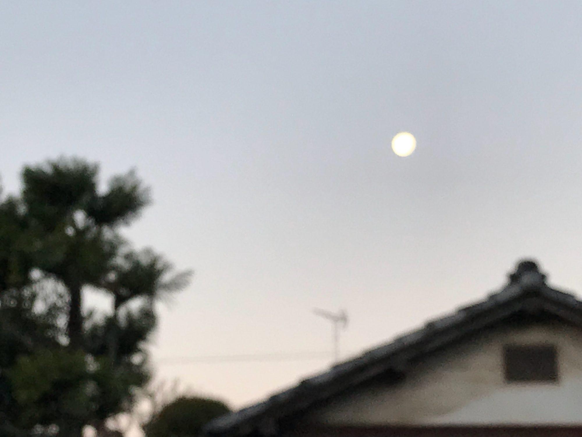 夜明けのお月さま